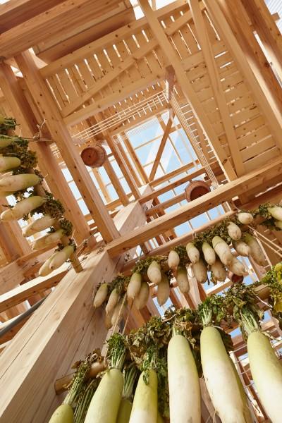 54c9b065e58ece457a000215_nest-we-grow-college-of-environmental-design-uc-berkeley-kengo-kuma-associates_nest-we-grow_064