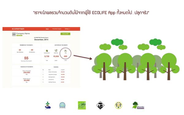 Ecolife-9