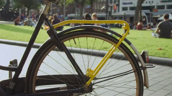 Yellow-Backie 5