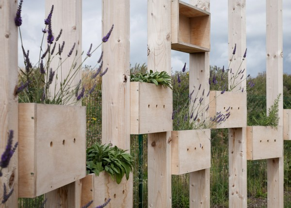 The-Hedge-School-by-AP-E_dezeen_1568_5