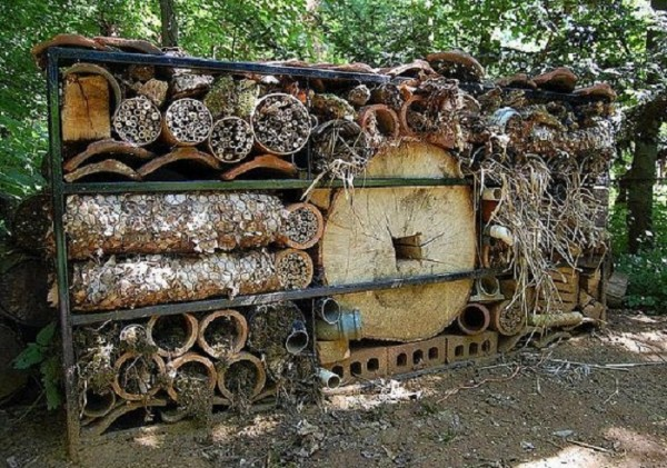 insect hotel002