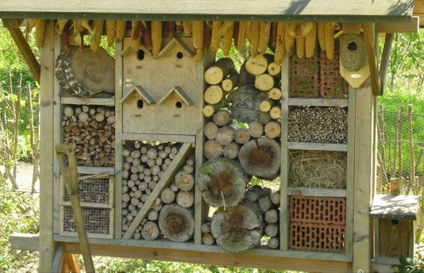insect hotel008