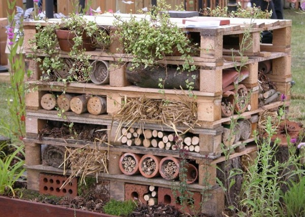 insect hotel009