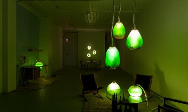 Living-Things-Mattress-Factory-exhibit-low-light-1020x610