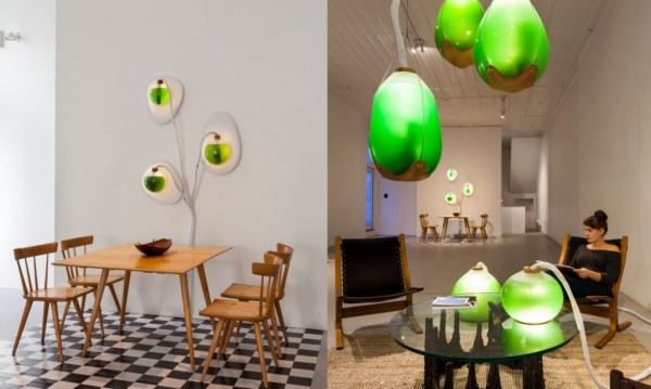 Living-Things-spirulina-lamp-split-1020x610