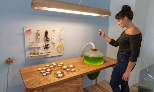 Living-Things-spirulina-table-interactive-1020x610