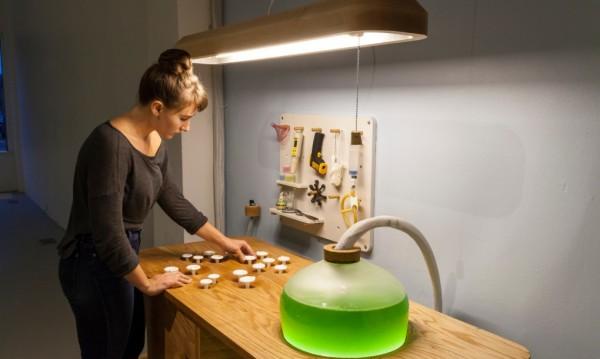 Living-Things-spirulina-table-interactive-angle-1020x610