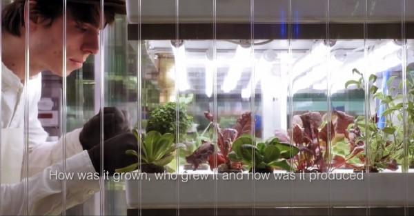 Untitled2-crop
