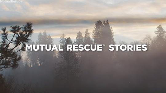 mutual-rescue01