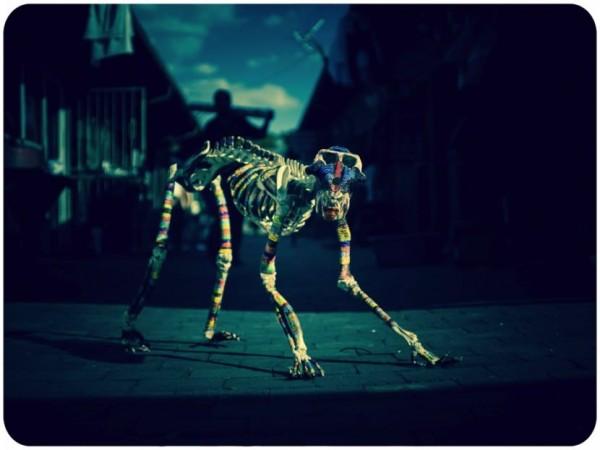 Ziman_Bones15-Mandril-Wide-830x622