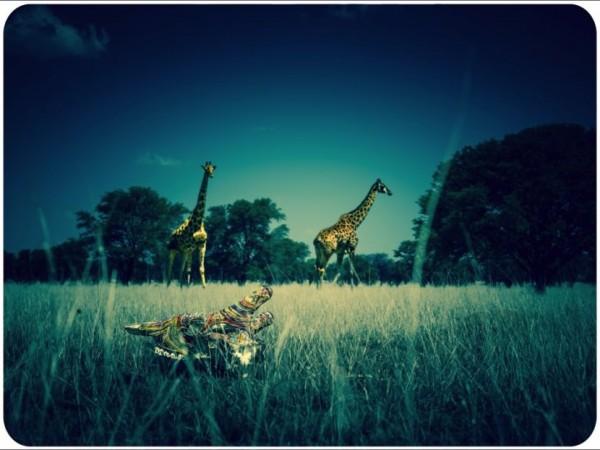 Ziman_Bones_5_Giraffes-830x622