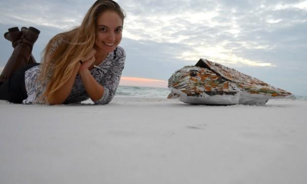 Cig-the-sea-turtle-by-SHELLart-5-1020x610