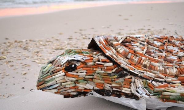Cig-the-sea-turtle-by-SHELLart-9-1020x610